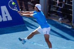maladie du tennisman genou